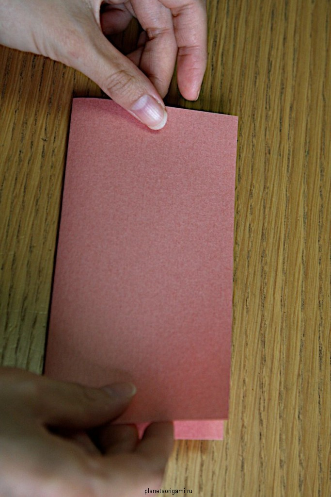 Лист бумаги складываем пополам