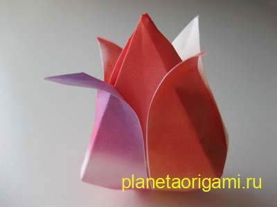 http://planetaorigami.ru/wp-content/uploads/2011/02/origami-tulpan-2.jpg