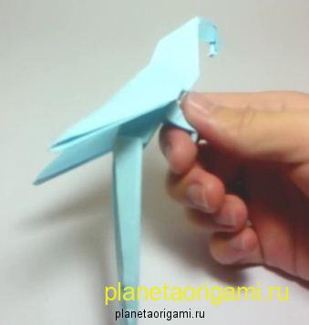 Модульное оригами схемы сборки попугая, мне ток тортилья не понравилась вы.