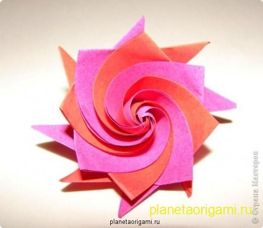 цветы из бумаги мастер класс