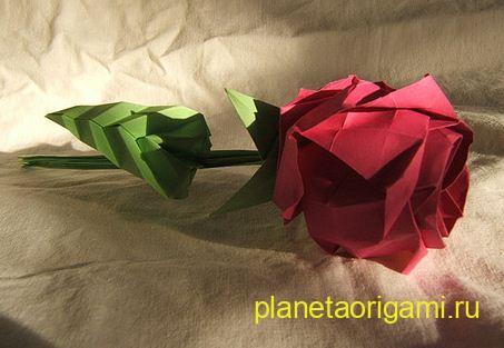 """Однако самой известной его моделью является  """"роза Кавасаки """" - цветок, бумажные лепестки которого настолько реалистично."""