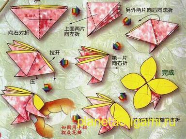 сакура оригами схема