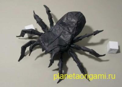 Оригами паук черного цвета