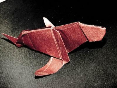 Морской котик из бумаги