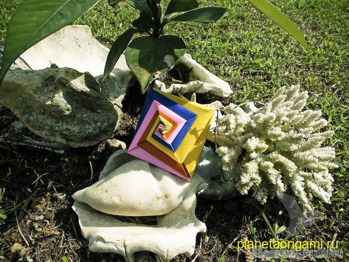 Оригами ракушка по схеме Tomoko Fuse.