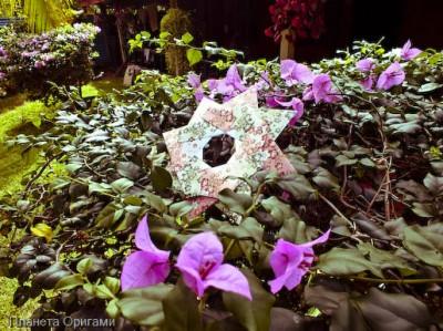 Бумажная восьмиконечная звезда