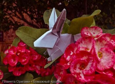 Кролик оригами
