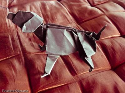 Оригами лабрадор