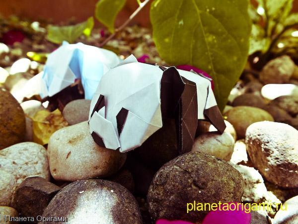 Детеныш панды из бумаги