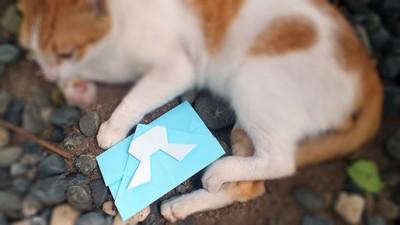 готовый конверт кролик