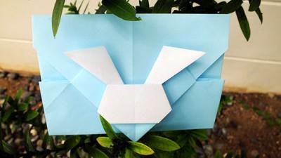 кролик конверт