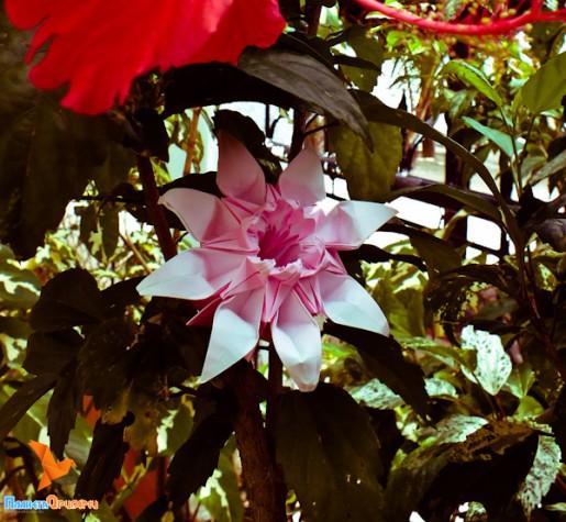 цветок - модуль для кусудамы