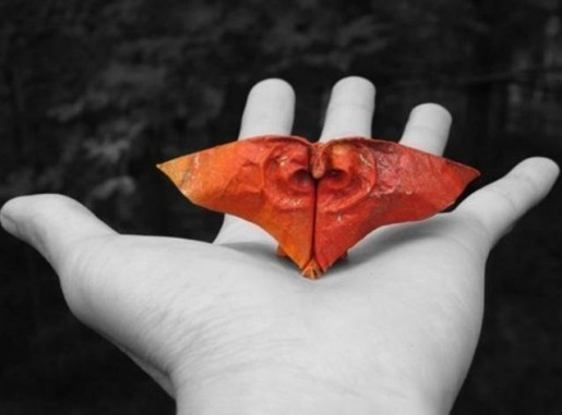 мини-оригами Dinh Truong Giang
