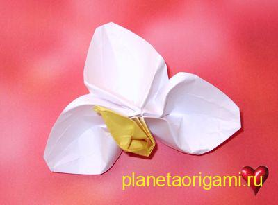 белый цветок оригами