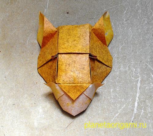 голова пумы