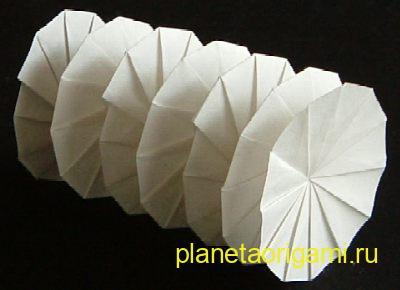 Origami Spring Jeff Beynon