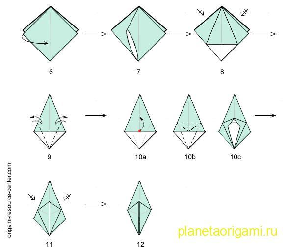 base Frog diagram