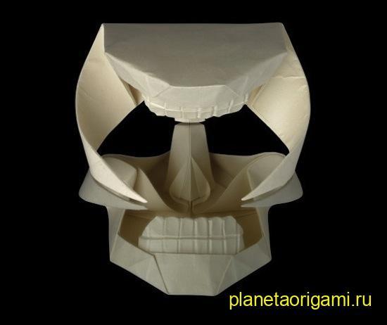 Модель черепа по схеме Herman van Goubergen