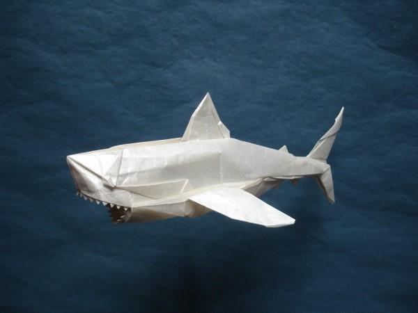 Большая белая акула по схеме