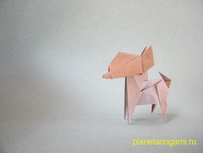 Dog Chihuahua (Fuchimoto Muneji)