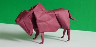 buffalo by Lionel Albertino