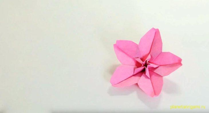 Оригами цветок сакуры по схеме Хоанга Тьена Куета (Hoang Tien Quyet)