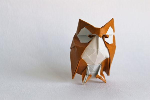 owl by Roman Diaz