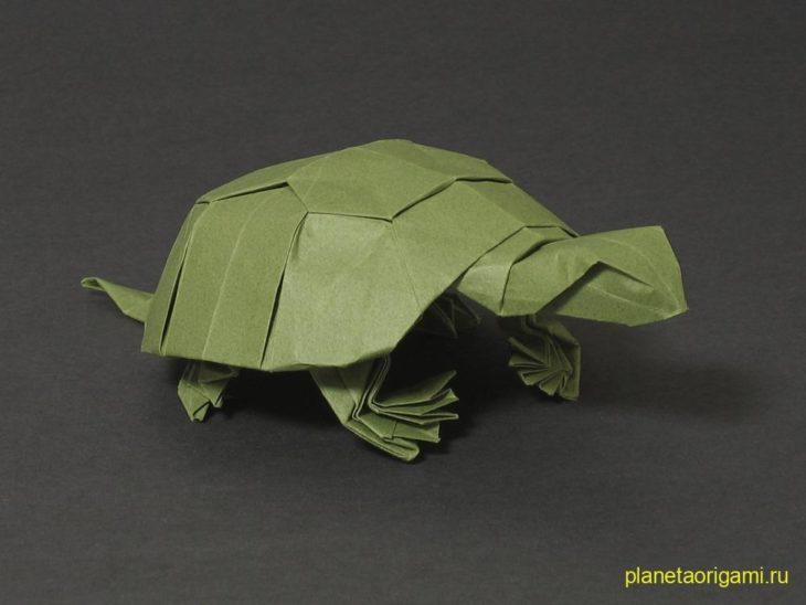 Морская черепаха от Riccardo Foschi