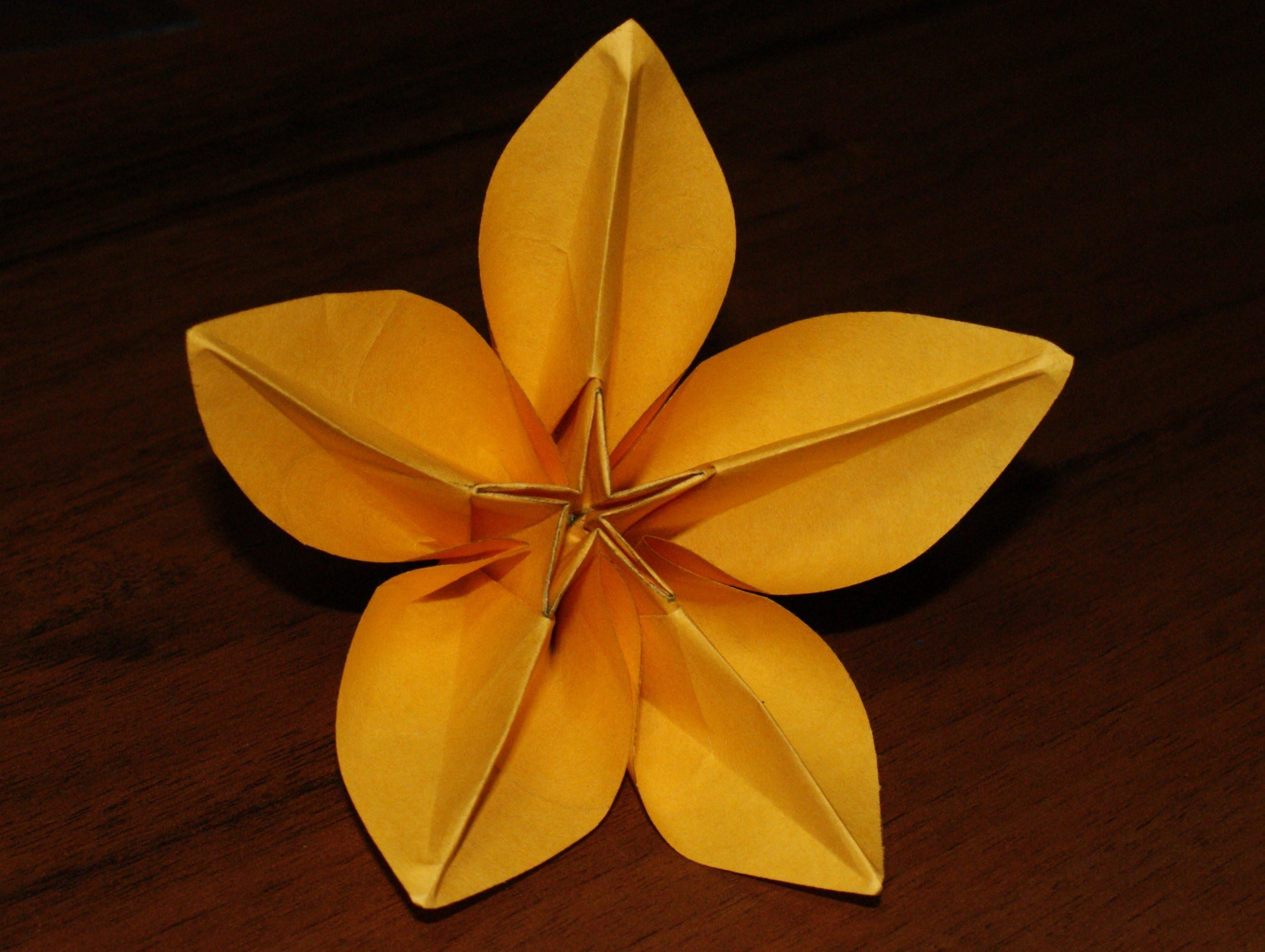 Цветок «Карамбола»