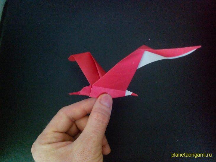 Делаем оригами чайку из бумаги по схеме от Fumiaki Shingu