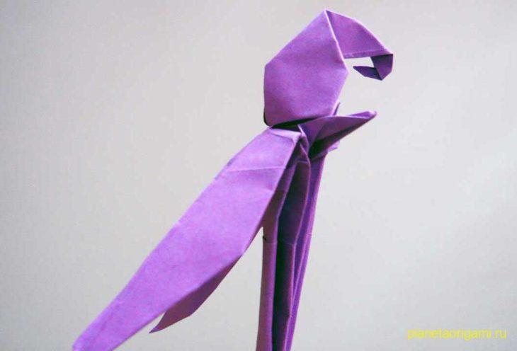 Собираем попугая оригами, видео урок