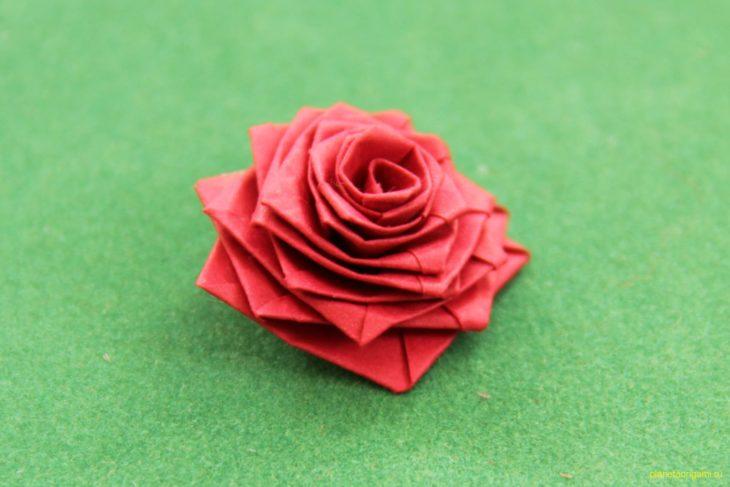 Роза по схеме Stephan Weber