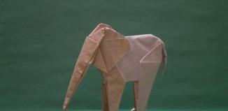 Легендарный слон Сифо Мабоны