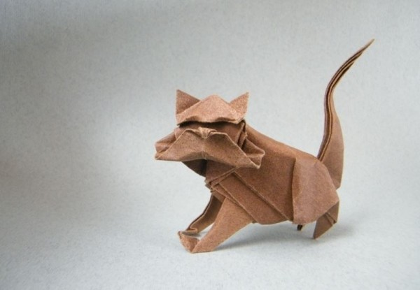 Кот по схеме Николаса Терри (Nicolas Terry)