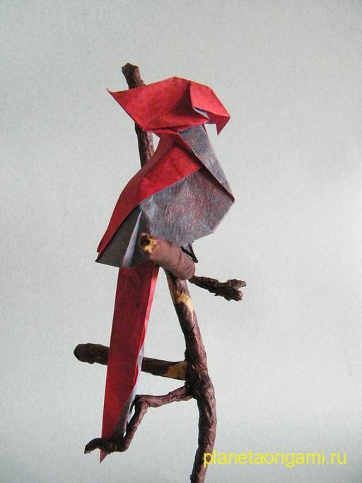 Оригами попугай по схеме Хонг Тин Квет (Hoang Tien Quyet)