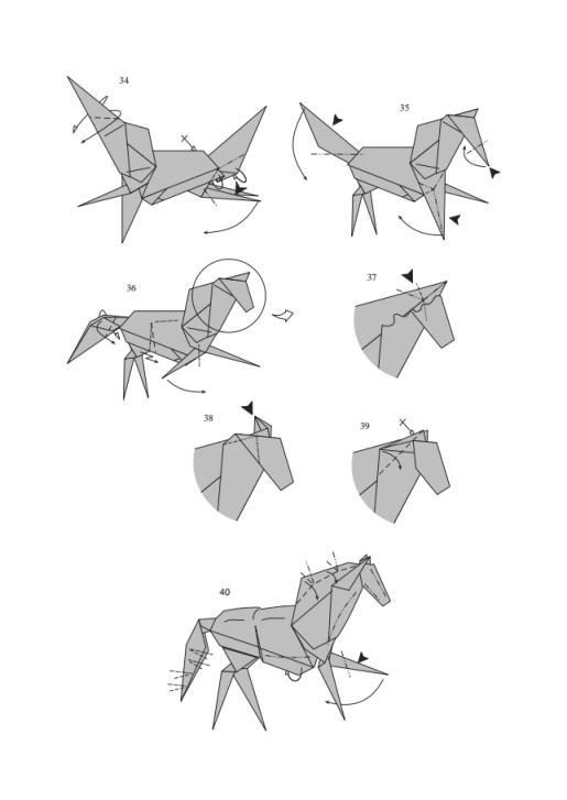 лошадь от J. Aníbal Voyer5