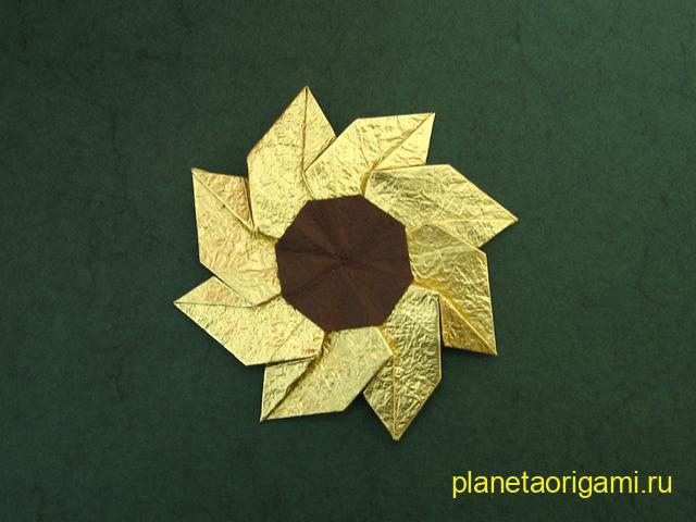 Цветок гейлардия по схеме Meenakshi Mukerji