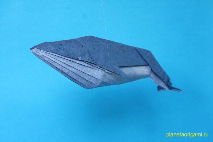 Синий кит по схеме Joseph Wu