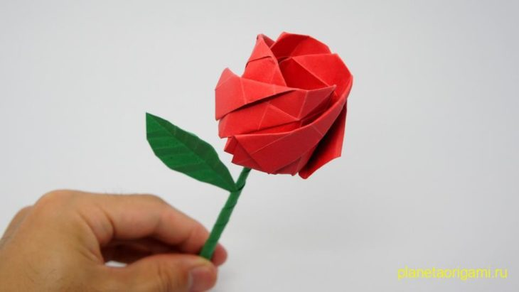 Роза по схеме Jo Nakashima