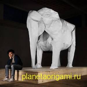 слон сифо мабоны