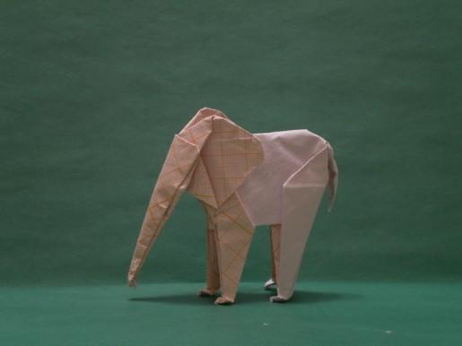 слон сифо мабона