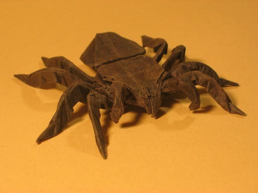 тарантула по схеме роберта ленга