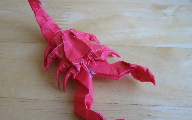 скорпион по схеме лэнга