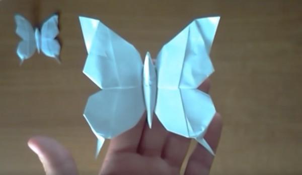 Оригами бабочка по схеме Riccardo Foschi