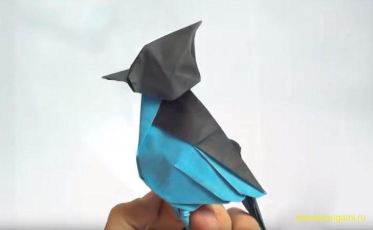 Оригами сойка по схеме Riccardo Foschi