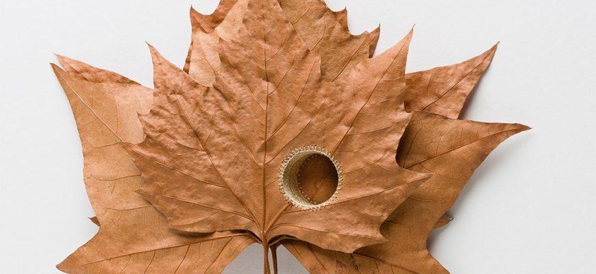 Оригами Танец листьев