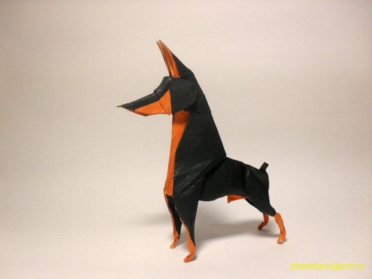 оригами доберман пиОригами собака доберман-пинчер по схеме Ares Alanyaнчер
