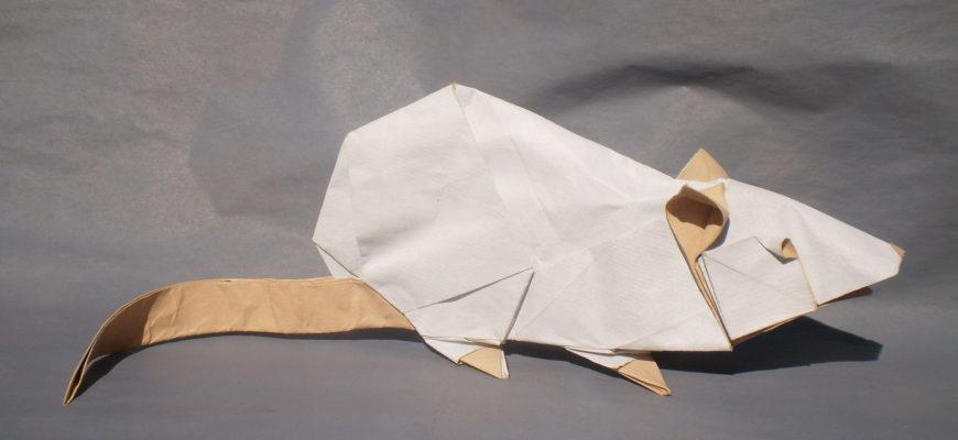 Крыса от Richard Galindo Flores