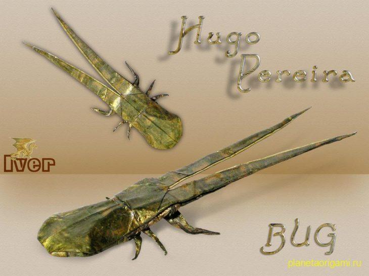 Жук по схеме Hugo Pereira