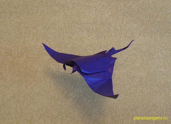 Manta Ray by Quentin Trollip